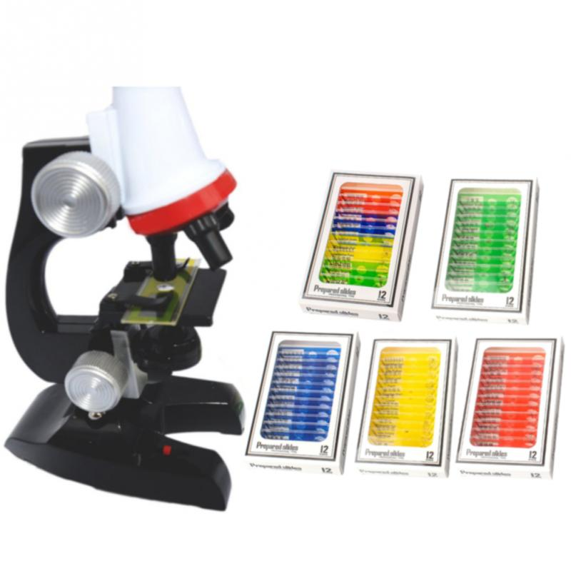 12pcs/box Kid Microscope Prepared Slide Plastic Sample Flower Plant Animal Biological Specimen Enlighten Child Science Education