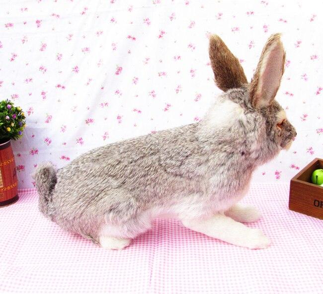 Jouet réel grand lapin environ 44x35cm modèle dur polyéthylène & fourrures lapin prop, cadeau de décoration de la maison s1647