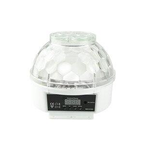 Image 3 - F & GMini RGBW 15W KTV גביש קסם כדור Led שלב מנורת DJ דיסקו לייזר אור מסיבת אורות קול מועדון חג המולד אורות