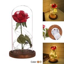 LED Beauty Rose and Beast Battery Powered Red Flow