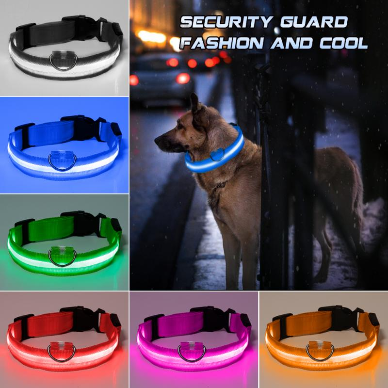 5 Sizes Battery Led Dog Collar Anti-Lost/ Car Accident Avoid Collar For Dogs Puppies Dog Cats Collars Luminous Pet Supplies 1
