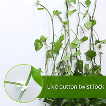 Clip Fixed-Clip-Bracket Stent-Supports Rattan-Clamp Wall-Vine Plant Invisible-Wall Climbing-Sticky-Hook