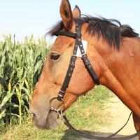 Horse Rope Halter Headcollar Equestrian Equipment Adjustable Horse Riding Bridle Safety Head Collar Horseback Strap Accessories 1