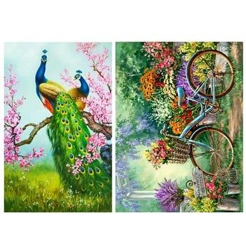 Juego de 2 piezas DIY de pintura de bordado de diamantes 5D, Kit de punto de cruz, decoración para el hogar, pavo real, ciruela, flor, verde y bicicleta