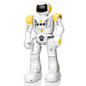 Remote Control Robot RC Robot