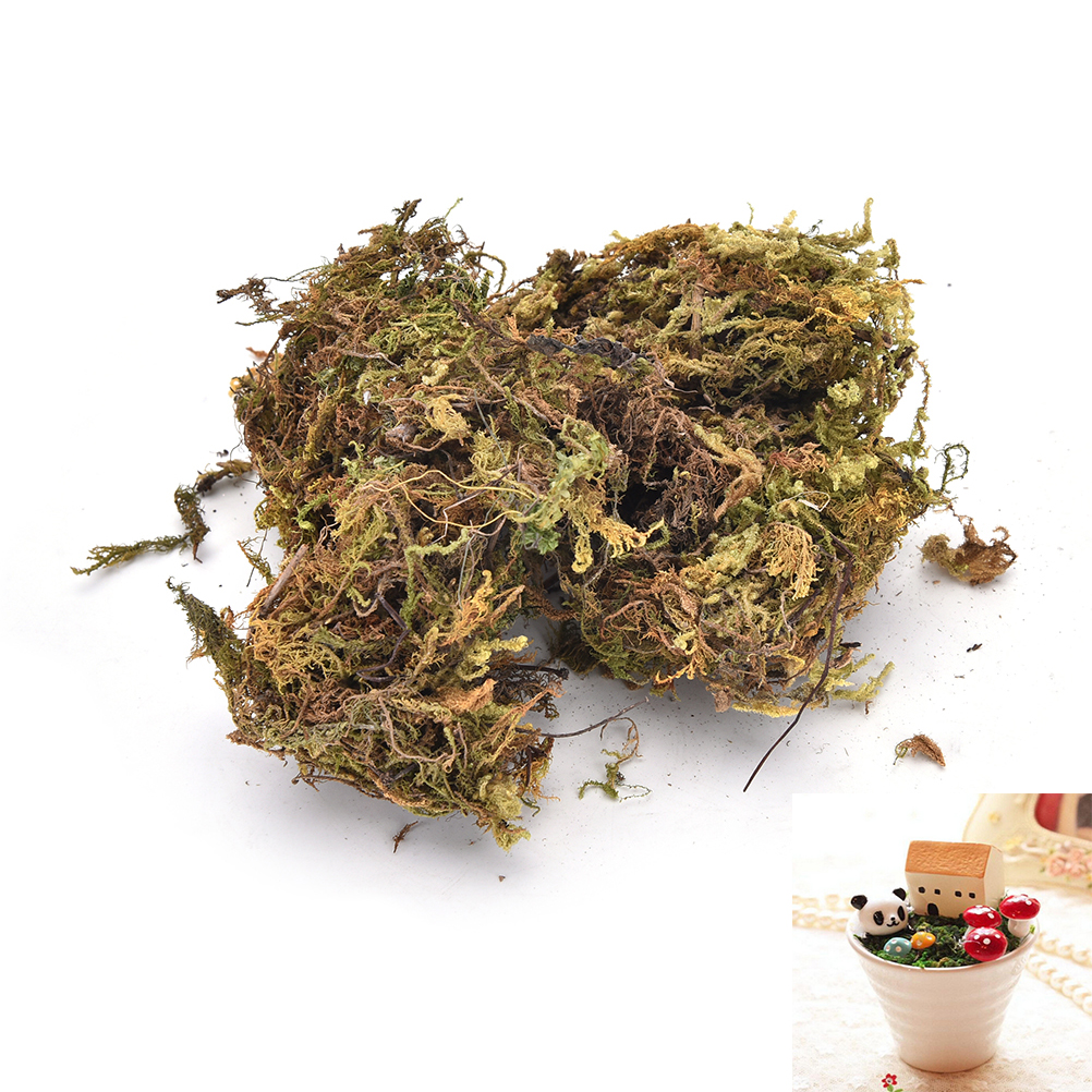 Artificial Keep dry moss decorative plants vase turf silk Flower accessories for flowerpot decoration 1Pack/10g