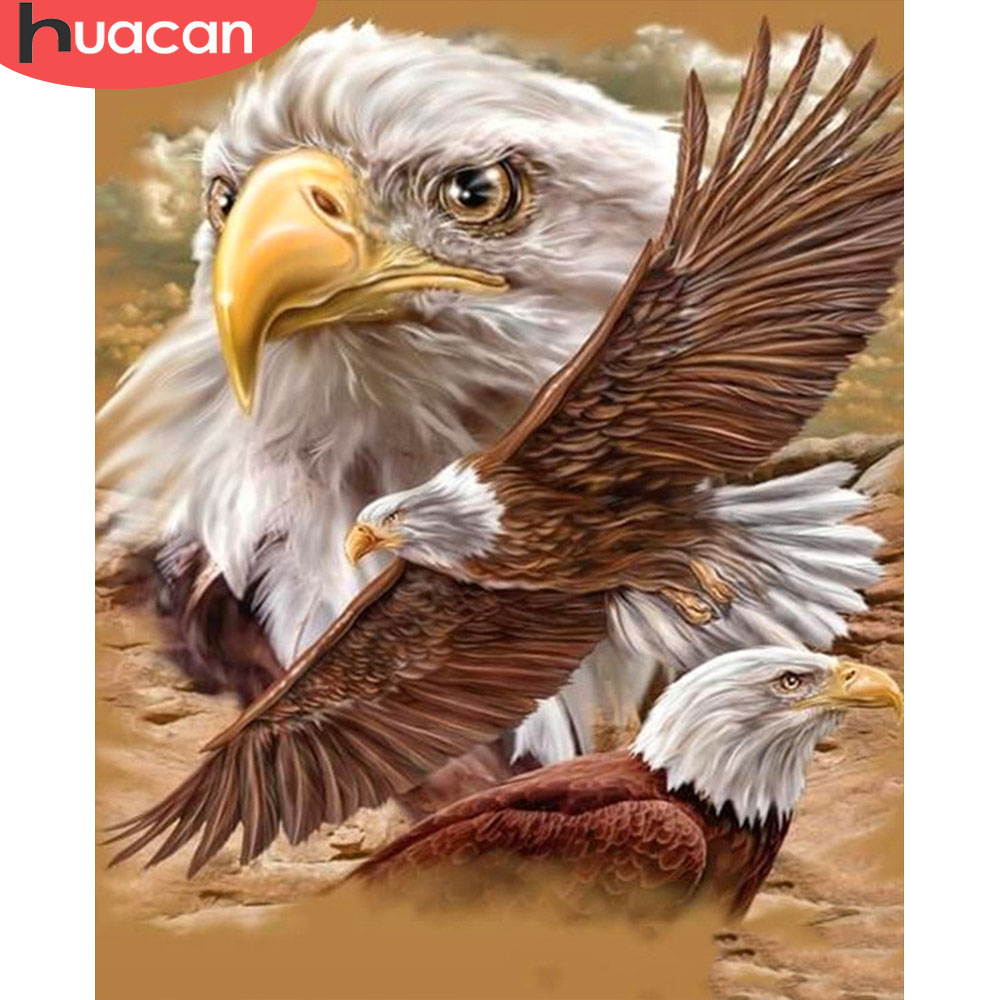 HUACAN Coloring By Number Eagle Drawing Canvas Acrylic Gift Home Decor Painting By Number Animal Handpainted Wall Art