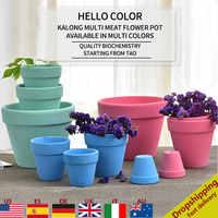 Maceta de Cactus para suculenta en miniatura de arcilla, maceta de cerámica de varios colores, maceta de terracota para decoración del hogar