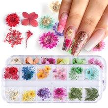 Mix suszonych kwiatów ozdoby do paznokci biżuteria naturalny wzór kwiatowy liść naklejki 3D wzory paznokci polskie akcesoria do Manicure TRF01-10