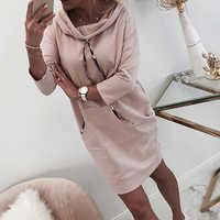 Hoodies Dress Women Autumn Winter Casual Hooded Sweatshirt Dresses 2019 New Ladies Long Sleeve Pink Pocket Pullover Dress D20