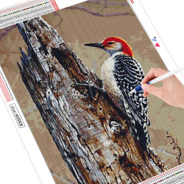HUACAN 5D Diamond Painting Bird Full Square Round Drill Diamond Embroidery Cross Stitch Animal Home Decor