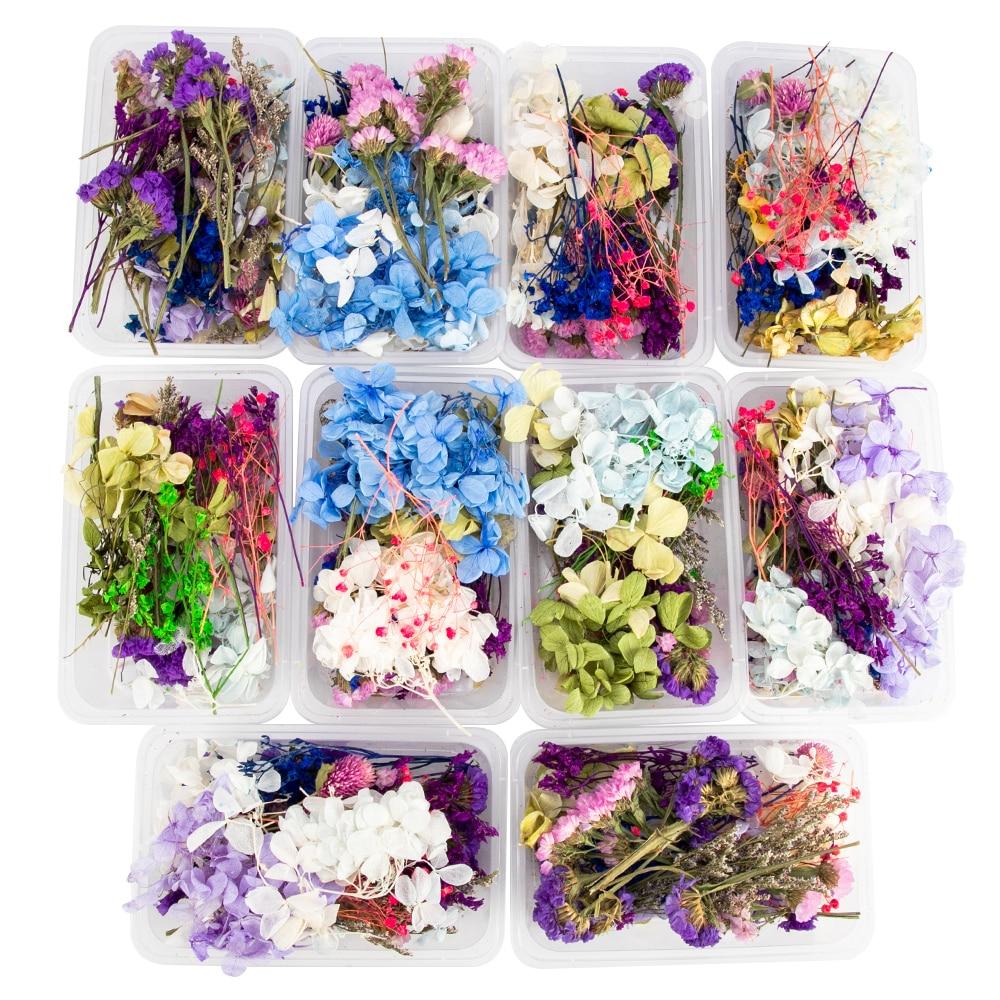 1 doos Echte Mix Gedroogde Bloem Droog Planten Voor Aromatherapie druk bloemen Hars Hanger Sieraden Maken Craft DIY Accessoires droogbloemen