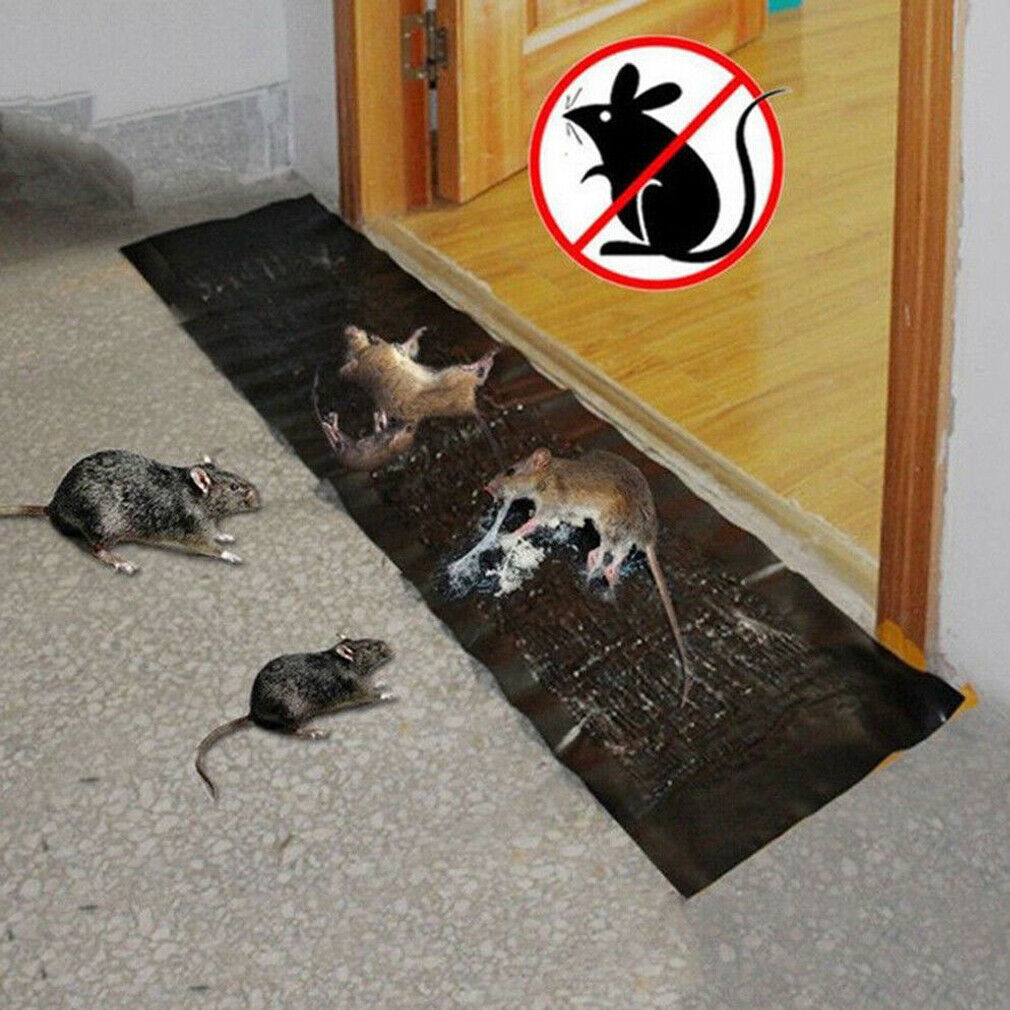 Large Size Super Catcher Glue Traps  Super Sticky Rat Mice Mouse Rodent Snake Bugs Glue Traps Board Mat Non-Poison