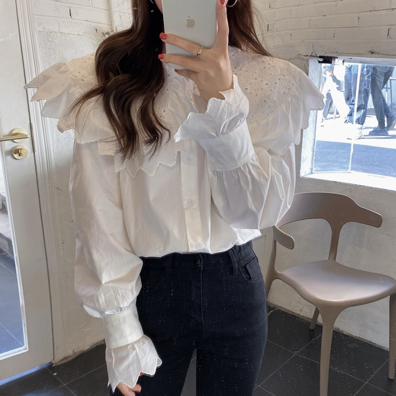 H247f708554c04a08827a554463d05afa3 - Spring / Autumn Hollow Out Big Lapel Collar Puff Sleeves Loose Solid Blouse