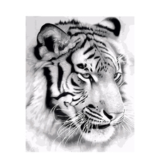 DIY Painting By Numbers White Tiger Animals Wall Art Picture Acrylic Canvas Painting For Home Decoration Drop Shipping Frameless gatyztory frameless picture diy painting by numbers animals modern picture canvas by numbers for home wall art decors 40x50cm