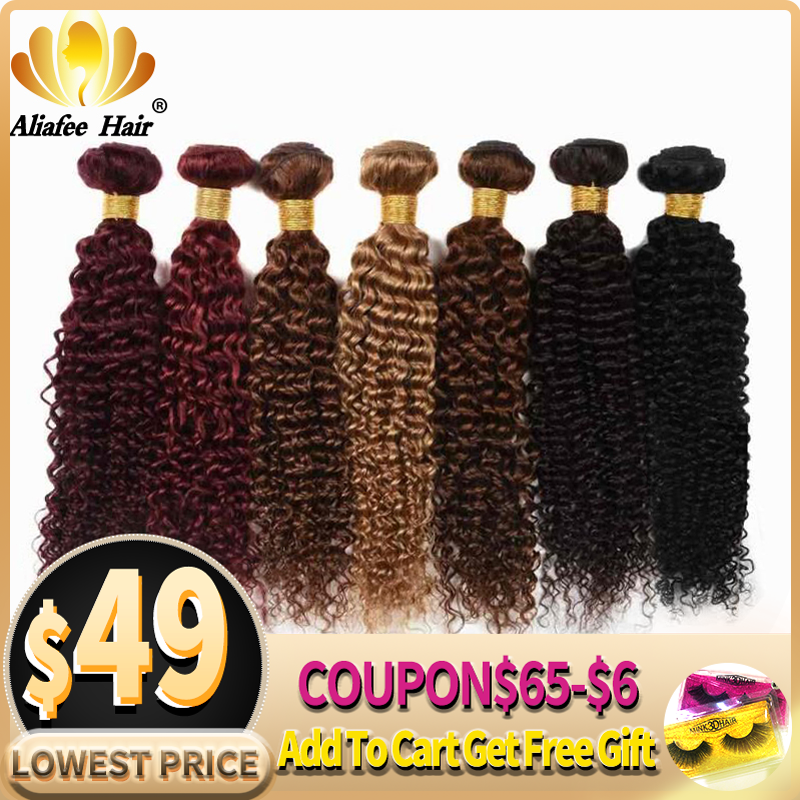 "Ali Afee Hair Brazilian Colorful Kinky Curly Hair 99J/33#/30#/27#/4#/2#/ Weave Non-Remy 8""-26"" Human Hair Extension"