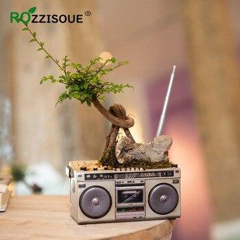 Maceta Suculenta decorativa Vintage para decoración de hogar y jardín Maceta de...