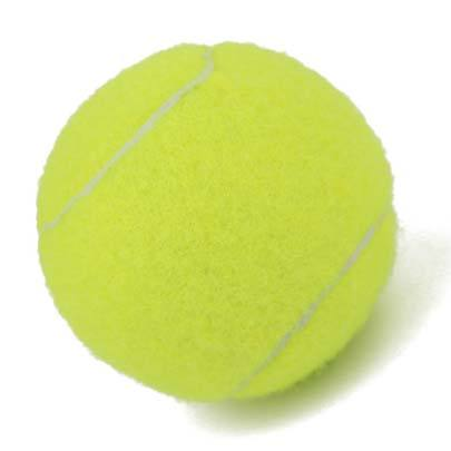 2pcs Professional Reinforced Rubber Tennis Ball Shock Absorber High Elasticity Durable Training Ball for Club School
