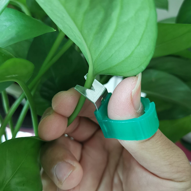 Garden Vegetable Fruit Picker Picking Finger Ring Cutting Scissors Harvesting Gardening Tools Supplies