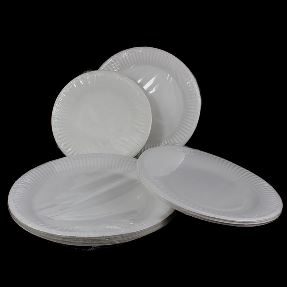 100PCS Disposable Plate 100% Compostable White Paper Plate Round Cake Plate for Party/Camping