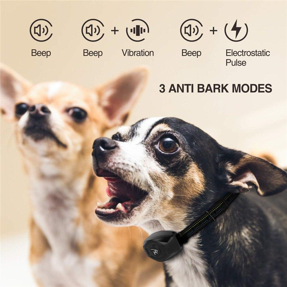 dog training collar-4