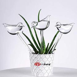 3 Pack podlewacz roślin samo podlewanie globusy  kształt ptaka ręcznie dmuchane przezroczyste szklane żarówki Aqua w Spryskiwacze od Dom i ogród na