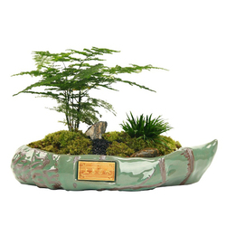 Chinês cerâmica gelo crack série bonsai pote cactus planta pote vitrificado grande vaso de flores suculenta plantador jardim decoração para casa