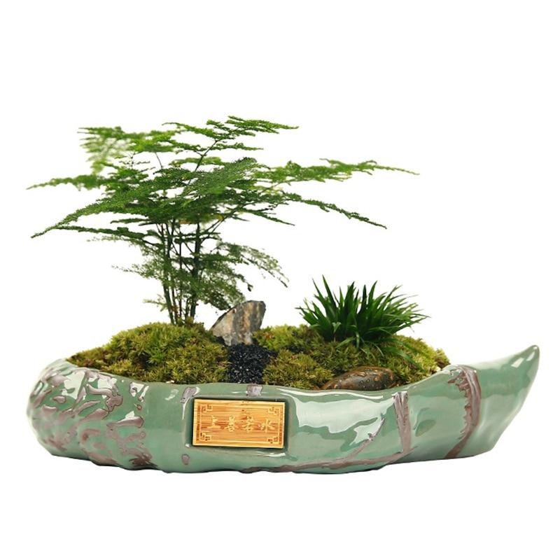 Chinese Ceramic Ice Crack Serial Bonsai Pot Cactus Plant Pot Glazed Large Flower Pot Succulent Planter Garden Home Decoration