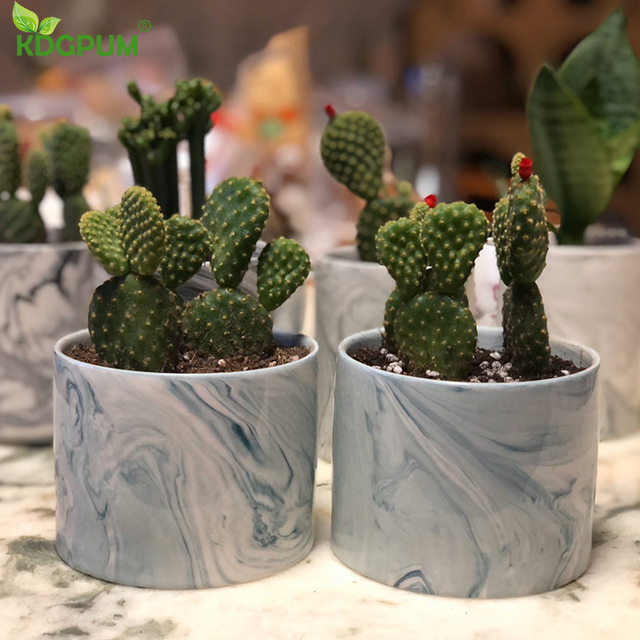 Ceramic Flower Pot Multicolor Marble Pattern Fleshy Cactus Plant Flowerpot  Home Small Bonsai Gardening Christmas Decoration 6