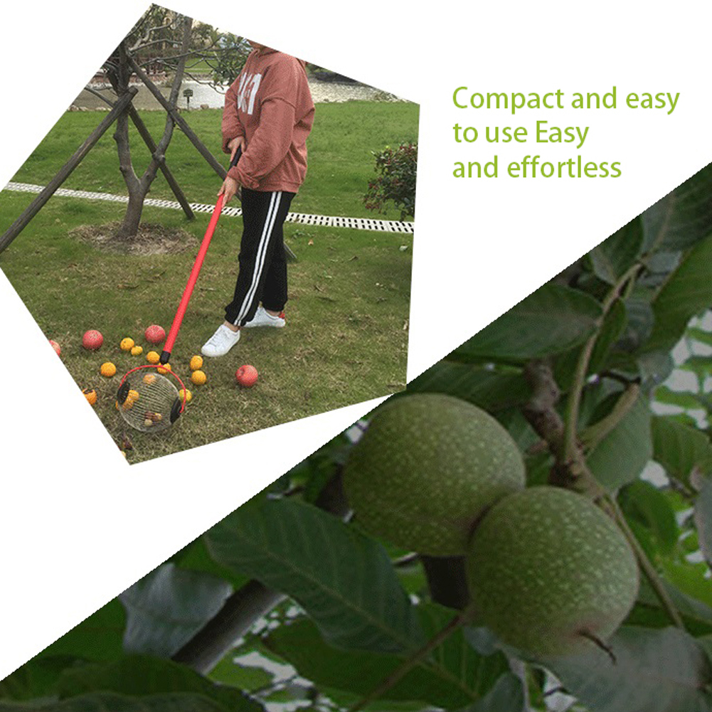 Tools : Walnuts Chestnuts Harvester Roller Nut Collector Retractable Aluminum Alloy Ball Garden Fruit Picker Family Orchards Tool NEW O9