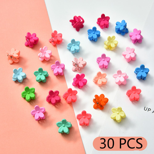 Small flower-30 Pcs