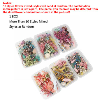 1 Box Real Pressed Flower Leaf Dried Daisy Resin Dry Beauty Nail Art Decals Epoxy Mold Fillings Jewelry Making - discount item  18% OFF Jewelry Tools & Equipments