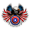 Car Sticker Various Sizes PVC Self-adhesive Decal Eagle Round Shield Crest Car Sticker Waterproof Auto Decors on Bumper Rear