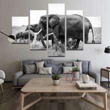 5 досок животных Слон Нерегулярные Декоративные картины hd печать