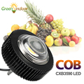CXB3590 100 Вт 3500 К COB Светодиодная лампа для выращивания растений для комнатных растений полный спектр CXB 3590 Светодиодная лампа для выращивания ...