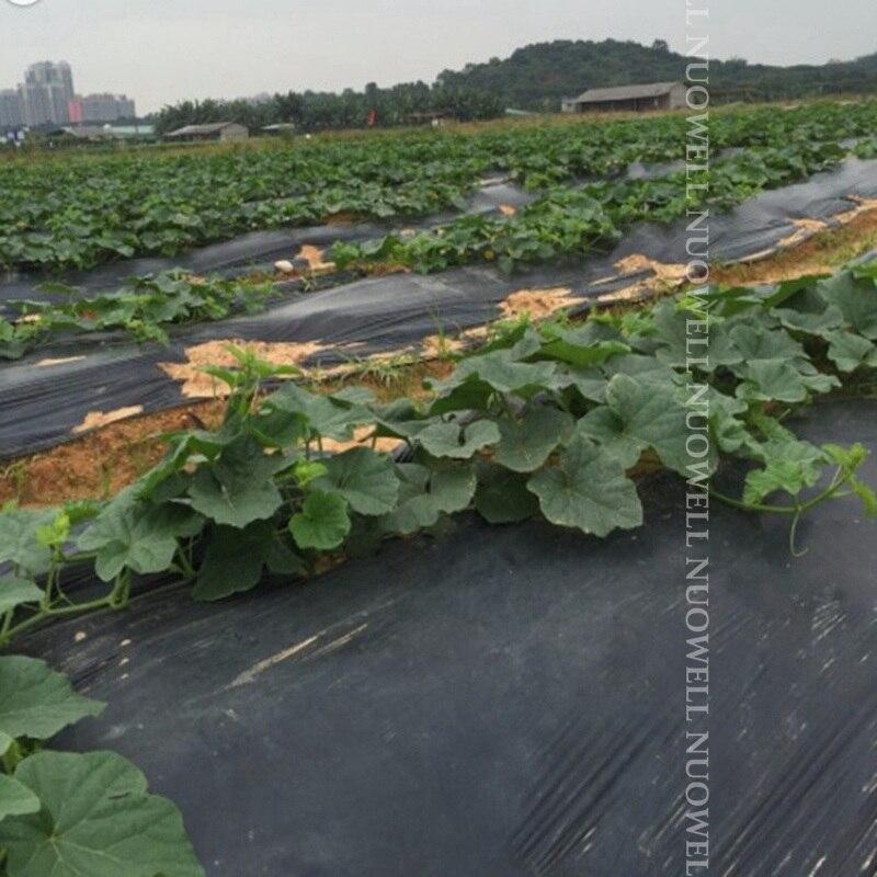 25 メートル 0.6 〜 2 メートル、厚さ 0.01 ミリメートル農業黒フィルム野菜植栽プラスチックマルチングフィルム植物雑草防除保温成長フィルム