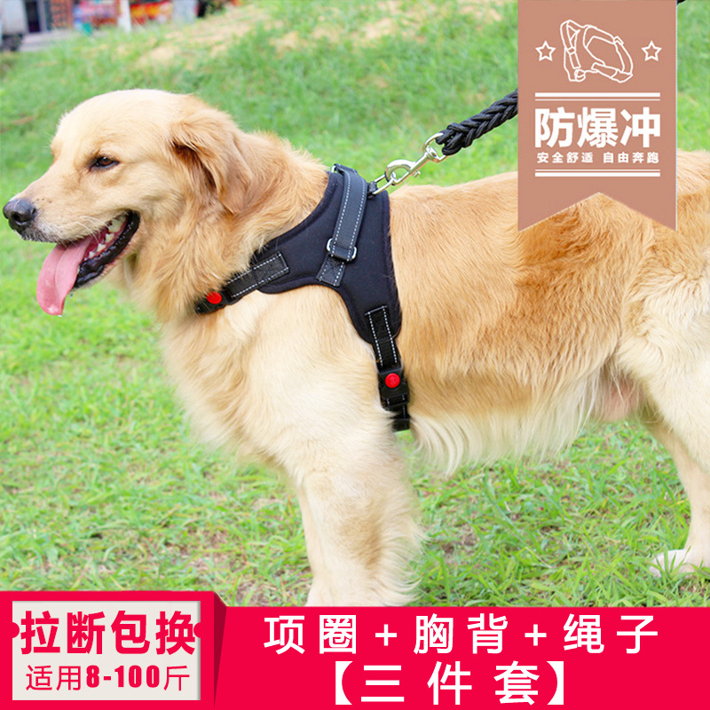 Big Dog Large Rope Dog Rope Neck Ring Traction Dogs Medium Dog Chinlon Dog Traction Rope Dog Chain