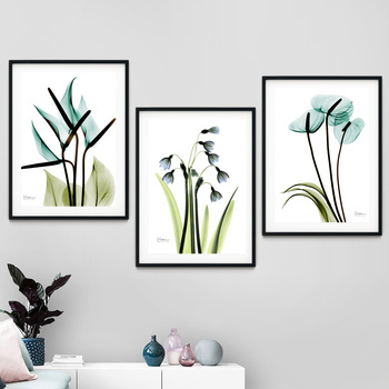 Calla Lily Galanthus nivalis Flower Plant Wall Art Canvas Painting Nordic Posters And Prints Wall Pictures For Living Room Decor image