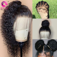 Pre Plucked Full Lace Human Hair Wigs With Baby Hair Brazilian Curly Human Hair Wigs For Women EVA 360 Full Lace Wig Human Hair