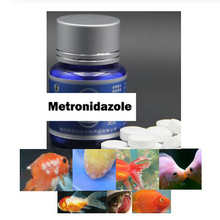 Medicine Drug Aquarium Parasites Tropical-Treatment Fish-Regular Fish-Fungicide Metronidazole