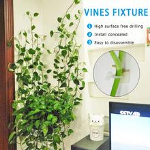 3 rozmiar niewidoczne ściany Rattan zacisk klip roślin wspinaczka ścienna klip winorośli oprawa ścienna przyklejony uchwyt z hakiem narzędzia rolnicze 20 sztuk tanie tanio Dropshipping