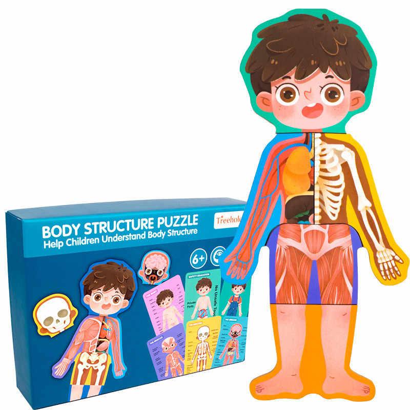Juguete biológico para niños estructura del cuerpo humano rompecabezas cognitivo rompecabezas de madera juguetes para niños y niñas juguetes educativos de seguridad