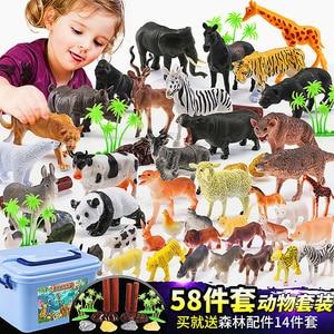 Image 3 - 58 יח\סט עולם חי גן חיות דגם איור פעולה צעצוע סט Cartoon סימולציה בעלי החיים יפה אוסף פלסטיק צעצוע לילדים