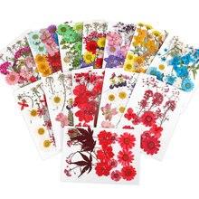 17 Styles de vraies plantes séchées en fleurs, pour bougie, remplissage de résine époxy, aromathérapie, moule en Silicone, bricolage de bijoux