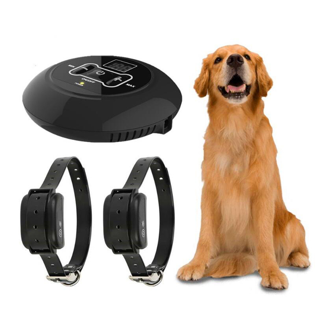 Wireless fence collar training device Kits with dog