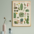 Кактус суккуленты современные растения Цветок Холст Живопись скандинавские постеры и принты настенное искусство для гостиной домашний де...