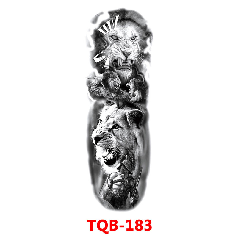 313037_no-logo_313037-2-23-g