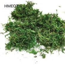 30/50/100g musgo verde natural manter seco decorativo plantas verdes acessórios para vaso de flores musgo seco casa decoração do jardim flor seca