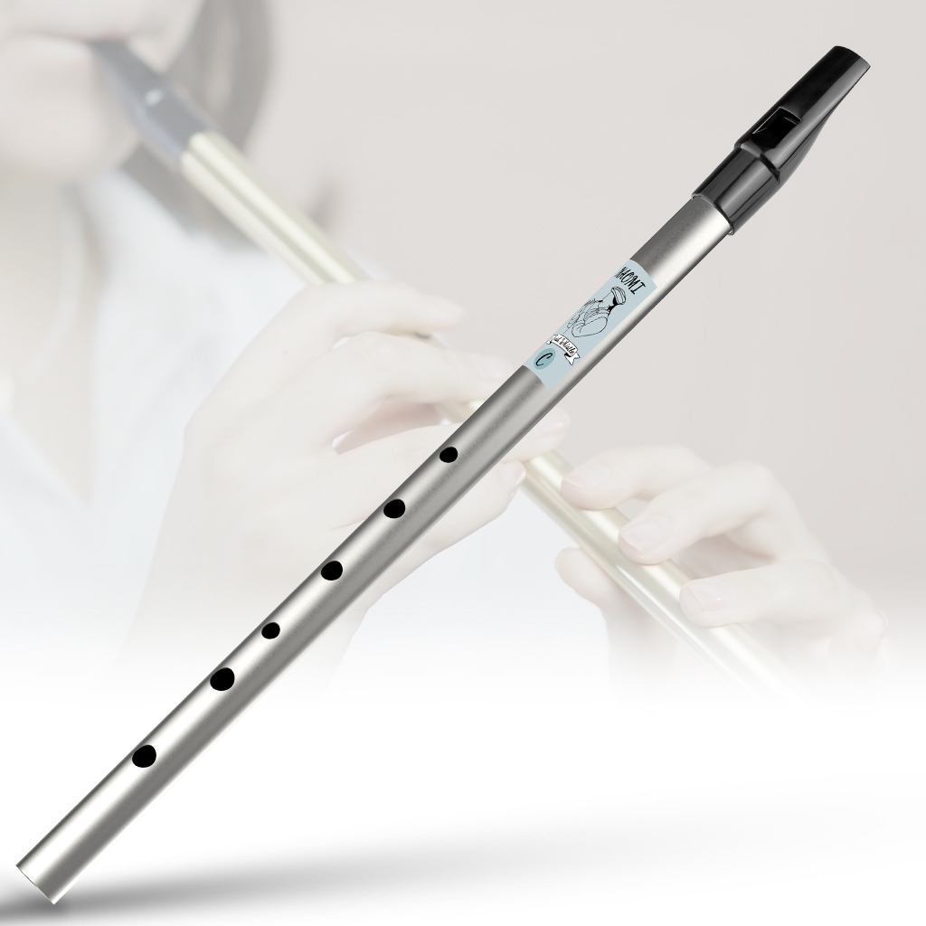 Whistle Tube Tin Whistle Key of D/C Irish Instrument Perfect for Beginners High C Gold/Silver