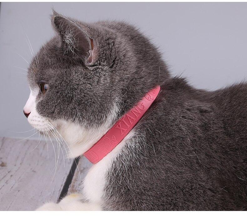 Dog Collars Christmas Collar  Harness Pitbull German Shepherd Arnes Perro Mediano Solid